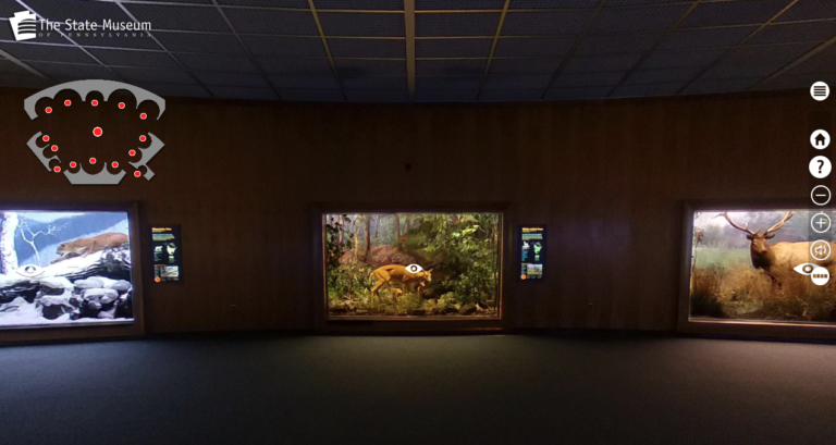 screen shot of 360 interactive tour made for the Harrisburg Museum and the mammal hall.